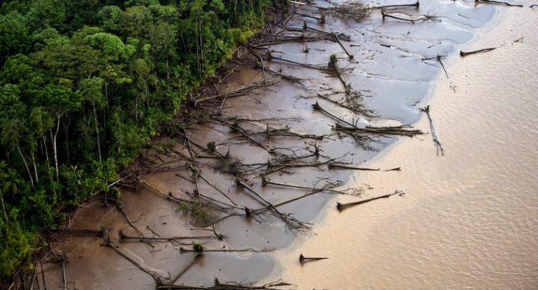 O desmatamento da Amazônia e das florestas brasileiras estão entre as prioridades no debate ambiental no mundo (Daniel Beltrá/Greenpeace)